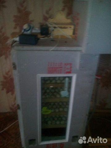 Инкубатор на 600 яиц