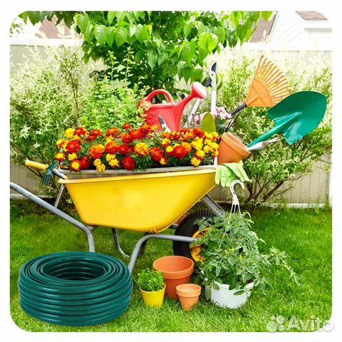 Сад и огород не у всех как
