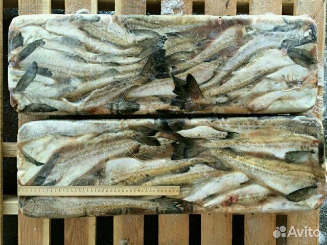 Рыба купить самовывоз
