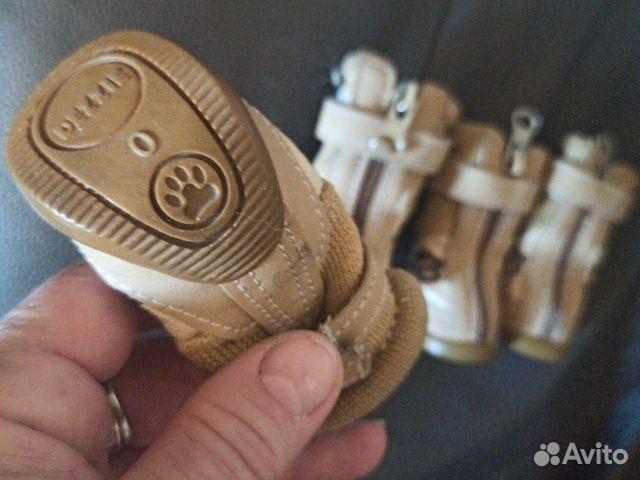 Обувь для собак 89062577662 купить 2