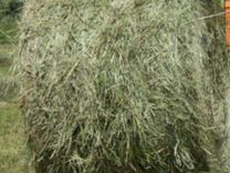 Сено) Принимаем заказы на поставку сена 2019г